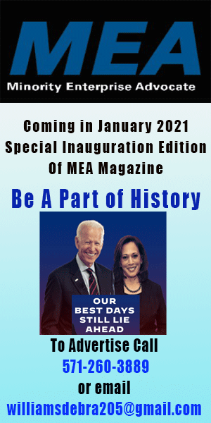 MEA Special issue